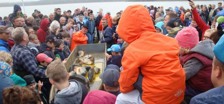 18. Lausitzer Fischwochen vom 21.09.-03.11.2019