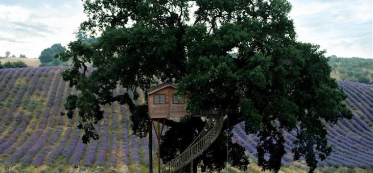 Ferienhaus auf Ecobnb jetzt online