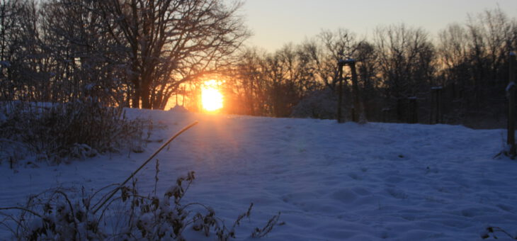 Sonnenaufgang vor dem Ferienhaus